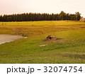 放牧 まきば 牧草地の写真 32074754