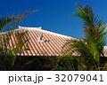 沖縄 竹富島 晴れの写真 32079041