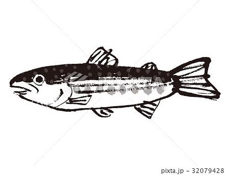 いわな 岩魚 水彩画 水墨画 32079428