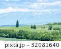 美瑛 ケンとメリーの木 北海道の写真 32081640