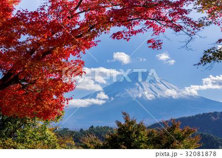 富士山 紅葉シーズン 32081878