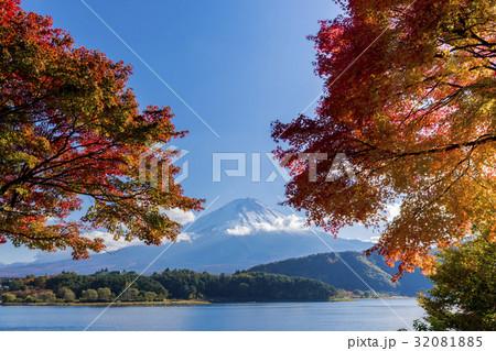 富士山 紅葉シーズン 32081885