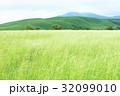 高原の夏 32099010
