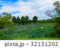 古代蓮の里 行田蓮 古代蓮の写真 32131202