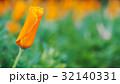 花 フローラル お花の写真 32140331