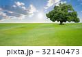 樹木 樹 ツリーの写真 32140473