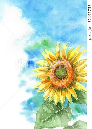 向日葵と夏空の暑中見舞いハガキ 32145758