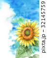 ポストカード ハガキテンプレート グリーティングのイラスト 32145759