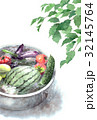 たらいで冷やしている野菜の暑中見舞いハガキ 32145764