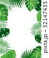 ボタニカル 熱帯植物 フレーム (透過) 32147435