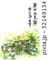 暑中見舞い スイレン ハガキのイラスト 32149134