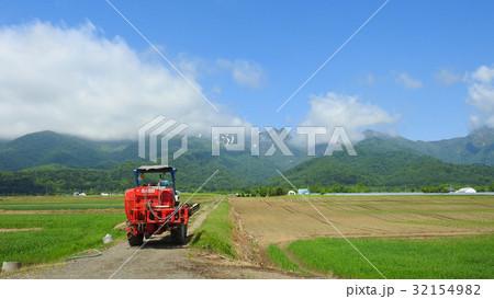 富良野の農場 32154982