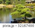日本庭園 松と池の風景 32167400