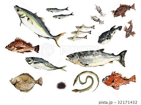 魚介セット 32171432