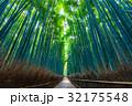 京都 嵯峨野の竹林 32175548