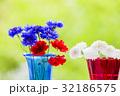 ヤグルマギクの花とゲウムの花 32186575
