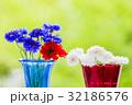 ヤグルマギク 花 生花の写真 32186576