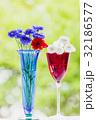 ヤグルマギクの花とゲウムの花 32186577
