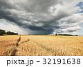 野原 運動場 畑の写真 32191638