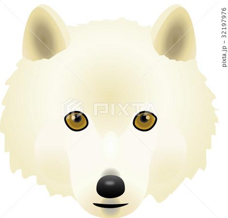 オオカミ 32197976