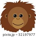 オランウータン 32197977
