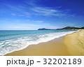 幣の松原 ビーチ 海の写真 32202189