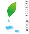 葉っぱと水滴 32205063