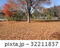 落ち葉の絨毯 32211837