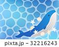 鯨 動物 哺乳類のイラスト 32216243