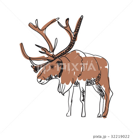 Reindeer hand drawn isolated icon 32219022