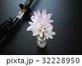 サフランモドキの花束と抜きかけた日本刀 32228950