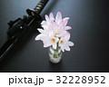 サフランモドキの花束と鞘に納まった日本刀 32228952