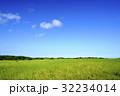 草原 青空 風景の写真 32234014