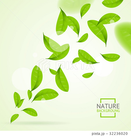 Realistic Fly Green Leaves Pattern Background 32236020