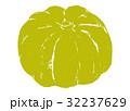 南瓜 かぼちゃ 水彩画のイラスト 32237629