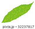 ゴーヤ 野菜 苦瓜のイラスト 32237817