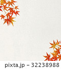 和紙 紅葉 楓のイラスト 32238988