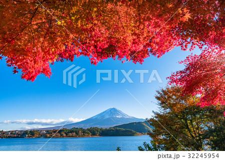 紅葉・富士山 32245954