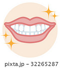 歯並び 口元アップ クリーン 32265287