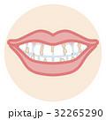 歯並び 口元アップ 歯垢 32265290