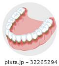 下顎の歯列 歯周病 32265294