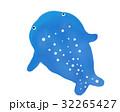 鯨鯊 32265427