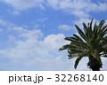 ヤシの木と夏空 32268140
