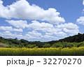 風景 花畑 晴れの写真 32270270