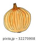 玉ねぎ 32270908