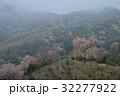 霧かかる山桜3(香川県さぬき市峰堂峠) 32277922