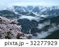 湧雲と桜1(徳島県三好市山城町信正) 32277929