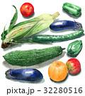 夏野菜 32280516