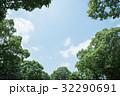 雲 青空 木の写真 32290691