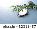 鏡 ミラー アイビーの写真 32311457